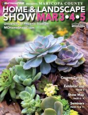Previous Magazine